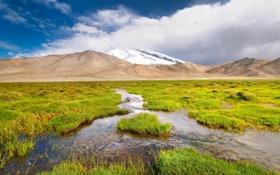 Обои трава, пейзаж, горы, ручей