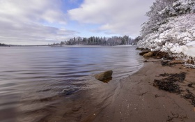 Картинка зима, снег, деревья, река, river, trees, winter