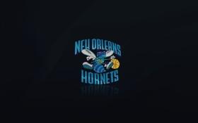 Обои Баскетбол, Синий, Черный, Логотип, Новый Орлеан, Шершни, New Orleans