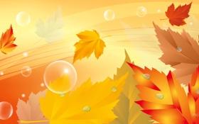 Обои осень, листья, пузырьки, коллаж
