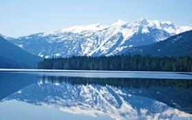 Картинка лес, снег, горы, природа, озеро, отражение, Пейзаж