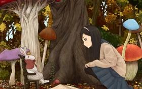 Картинка грибы, кролик, alice in wonderland, алиса встране чудес