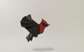 Картинка полет, птица, крылья, тень, оригами