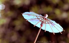Картинка макро, зонтик, фон, голубой, обои, зонт, wallpapers
