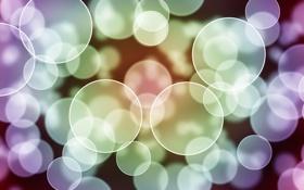 Обои круги, абстракция, узоры, краски, colors, circles, patterns
