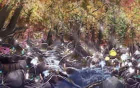 Картинка Лес, река, лучи, утро, сундук