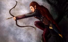 Картинка девушка, лук, арт, эльфийка, Tauriel, Хоббит: Пустошь Смауга, The Hobbit: The Desolation of Smaug