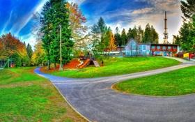 Обои небо, деревья, парк, газон, Словения, Maribor
