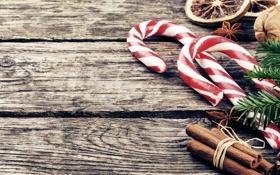 Обои зима, ветки, фон, дерево, ель, Новый Год, Рождество