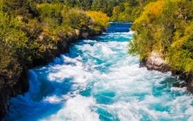 Обои поток, река, деревья, природа