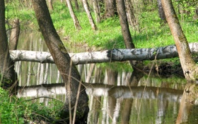 Картинка природа, река, красота