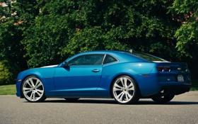 Обои задняя часть, синий, камаро, Chevrolet, Cordon, CR-1, шевроле