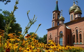 Обои цветы, желтый, крест, церковь