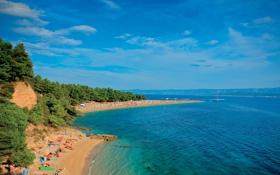 Обои природа, людии, пляж, деревья, море