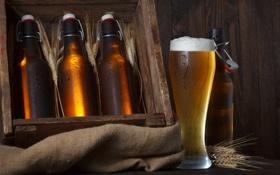 Обои пена, стол, бокал, пиво, колоски, бутылки, ящик