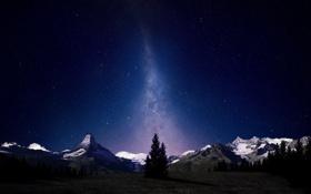 Картинка небо, свет, снег, деревья, горы, ночь, природа