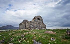 Картинка трава, дом, руины, заброшенность