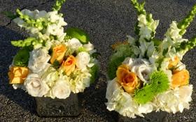 Обои фото, Цветы, Розы, Гортензия, Букеты, Львиный зев