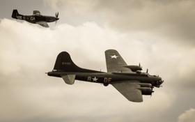 Обои полёт, бомбардировщик, B-17, P-51 Mustang
