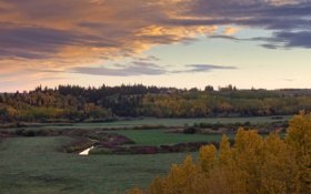 Картинка поле, небо, трава, облака, деревья, ручей, дома