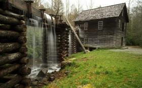 Картинка трава, вода, дом