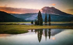 Картинка лес, деревья, природа, озеро, гора