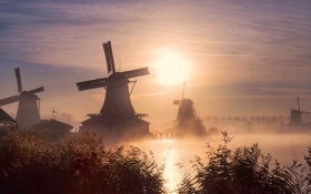 Обои fog, sunrise, windmill