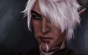 Обои эльф, лицо, Fenris, воин, Dragon Age