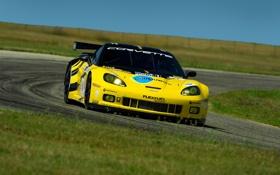 Обои дорога, машины, гонка, скорость, тачки, гонки, corvette