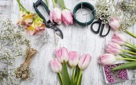 Картинка тюльпаны, pink, flowers, tulips, spring, decoration, workplace