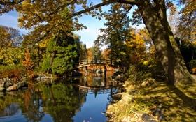 Картинка осень, небо, деревья, мост, пруд, парк