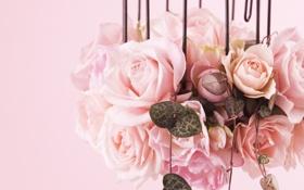 Картинка клетка, рози, цвети