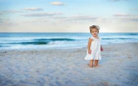 Картинка песок, море, волны, пляж, цветок, небо, облака
