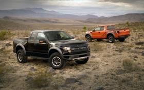 Картинка ford, raptor, f-150, раптор, форд ф-150