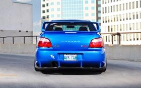 Обои Impreza, STI, WRX, задок, Subaru