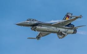 Картинка истребитель, полёт, Fighting Falcon, многоцелевой, Belgian F-16, «Файтинг Фалкон»