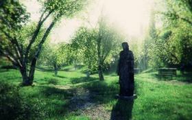 Обои памятник, лес, заросли, деревья, трава, береза, девушка