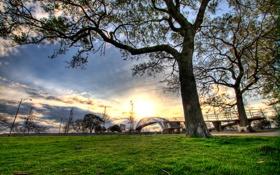 Обои трава, деревья, города, пейзажи
