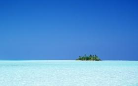 Обои тропики, горизонт, океан, остров, пальмы, море