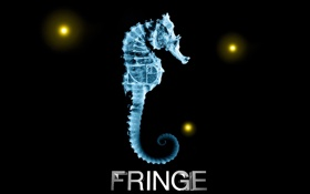 Картинка рентген, fox, грань, fringe, за гранью, Морской конёк