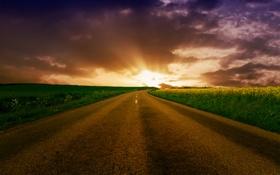 Картинка дорога, поле, небо, путь, обои, пейзажи, поля