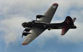 Картинка полет, бомбардировщик, B-17, четырёхмоторный, тяжёлый, Flying Fortress, «Летающая крепость»