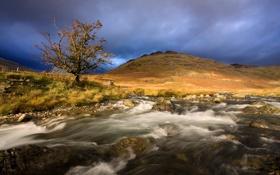 Картинка природа, река, камни, дерево, гора, поток