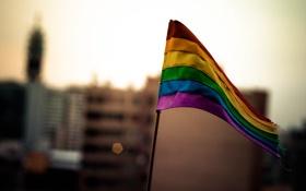 Обои цвета, флаг, ткань, флажок