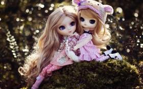 Картинка природа, девочки, игрушки, куклы, сидят, длинные волосы