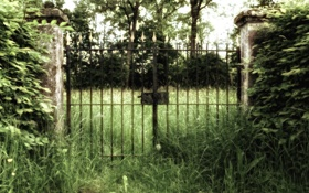 Обои матушка природа, трава, креатив, ворота, фото