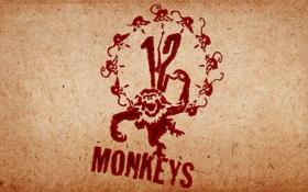 Обои логотип, Twelve Monkeys, армия двенадцати обезьян, двенадцать обезьян