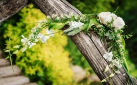 Обои цветы, букет, ствол, flowers, bouquet, the stem
