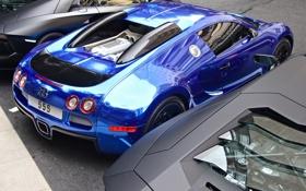 Обои синий, Bugatti, Veyron, бугатти, хром, Blue, задок
