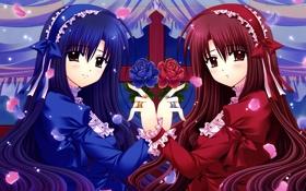 Обои цветы, девушки, красное, розы, аниме, синее, платья